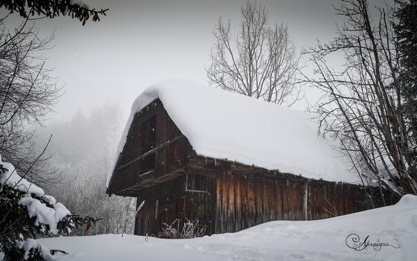 Cabane de berger au Corbier