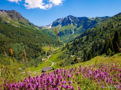 Vallée des Bauches